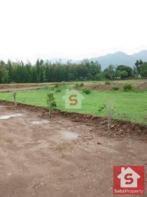 Property for Sale in sumungli road Quetta, quetta-others-8709, quetta, Pakistan